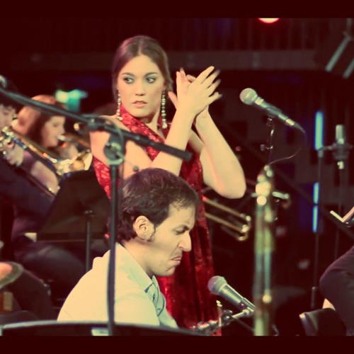 The BvR Flamenco Big Band's avatar