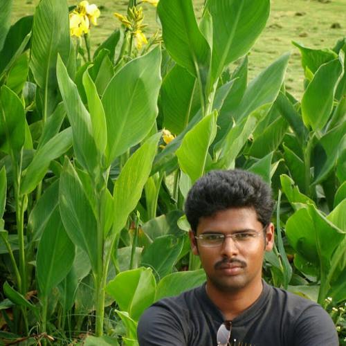karthi Muthu's avatar
