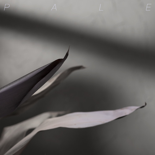 Pale.'s avatar
