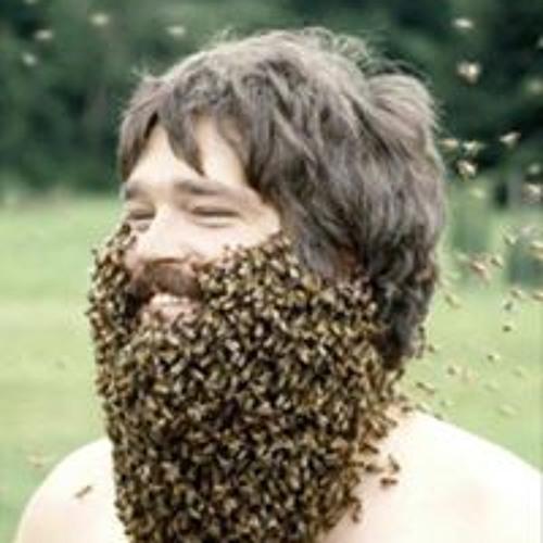 Zach Herling's avatar