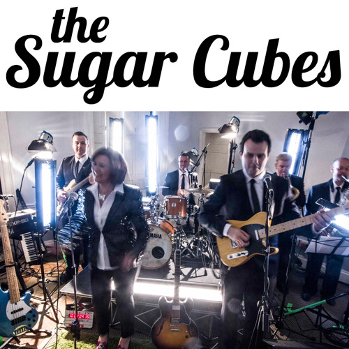 The Sugarcubes Band's avatar
