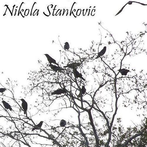 Nikola Stanković's avatar