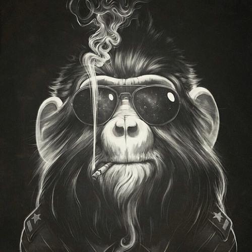 Haze Nulldreinull's avatar