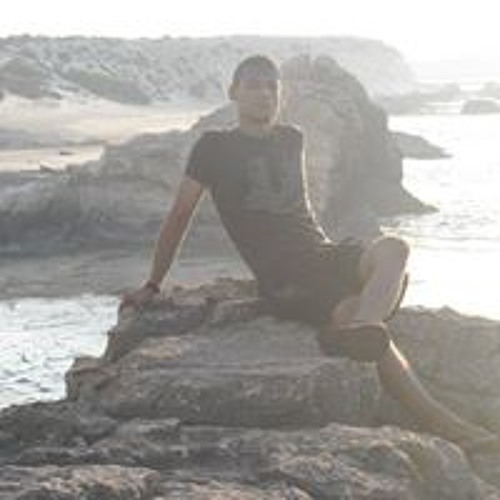 Mohamed Elandaleeb's avatar