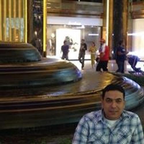 Rasheed Al Fetyany
