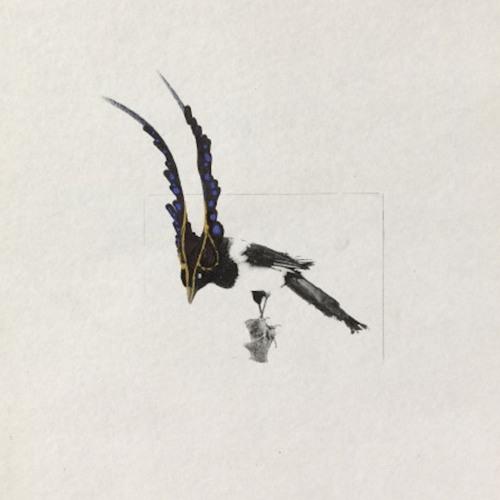Fantomette's avatar