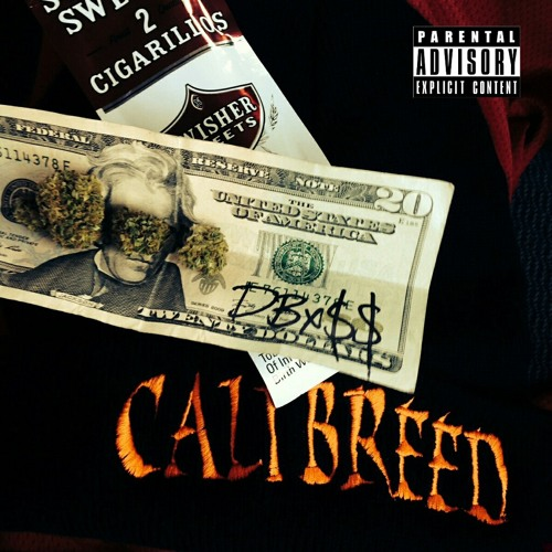 Cali Breed's avatar