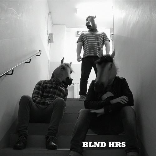Blonde horse's avatar