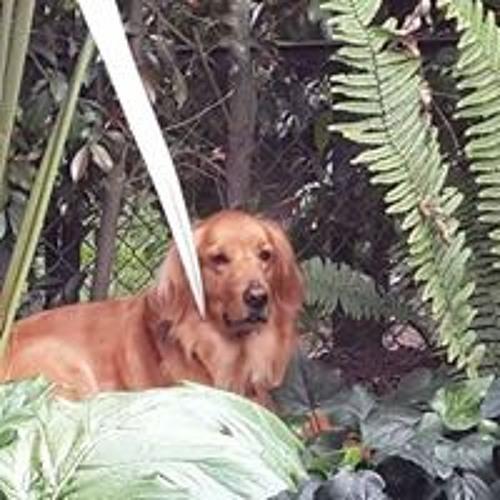 Claudia Jimenez 37's avatar