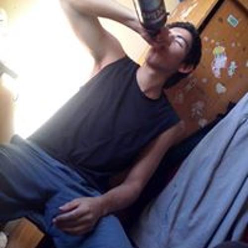 Rodrigo Sebastian Guerra's avatar
