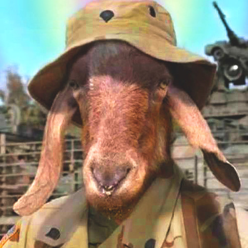 CHIEFGENERALMASTERELDER's avatar