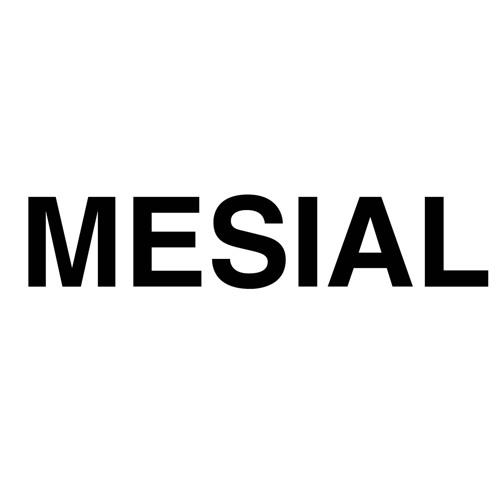 Mesial's avatar