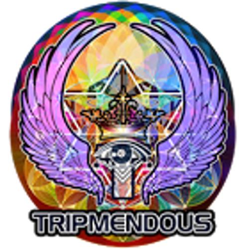 TRIPMENDOUS's avatar