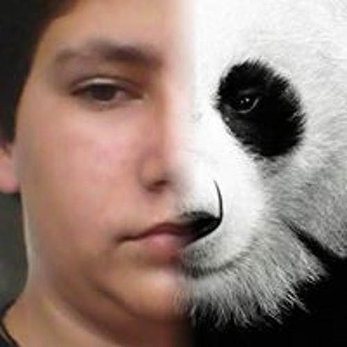 Vlado Dimitrov's avatar