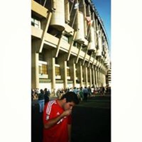 Joao Goncalves 161's avatar