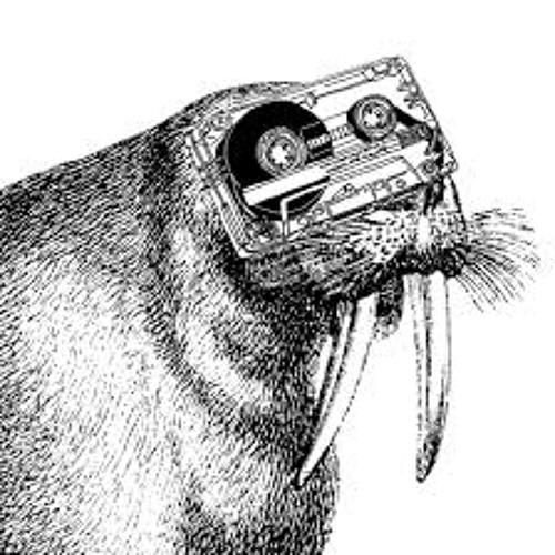 Dimitri Guyot's avatar