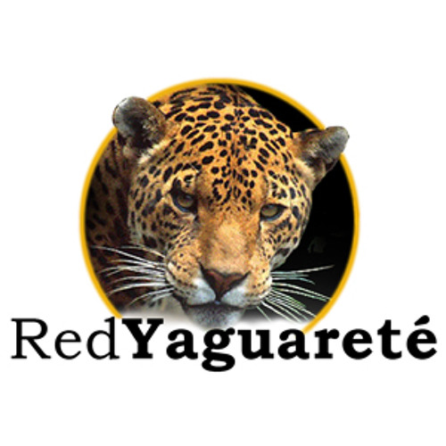 "Spot ""Un Yaguareté menos en nuestras selvas"""