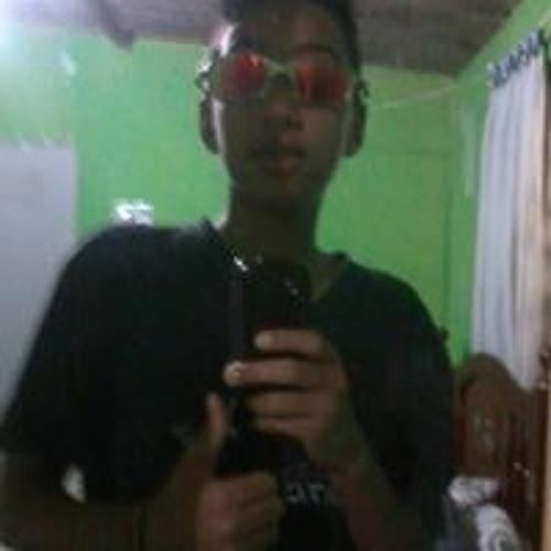 João Gabriel Ferreira 12's avatar