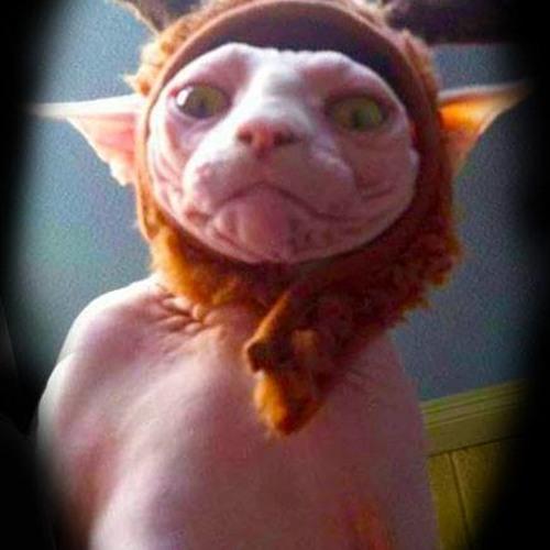 Madandre's avatar