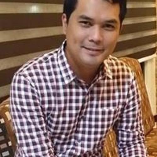 Luis Vergel de Guzman's avatar