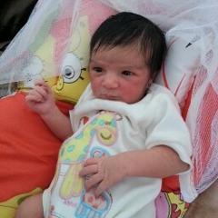 Arwa Nasr