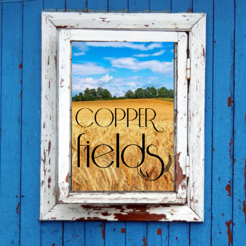 Copper Fields's avatar