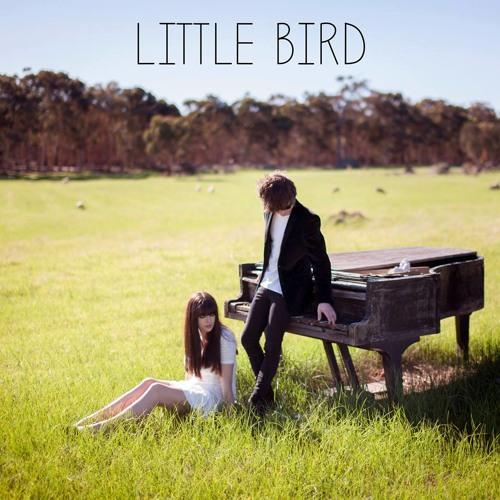 Little  Bird's avatar