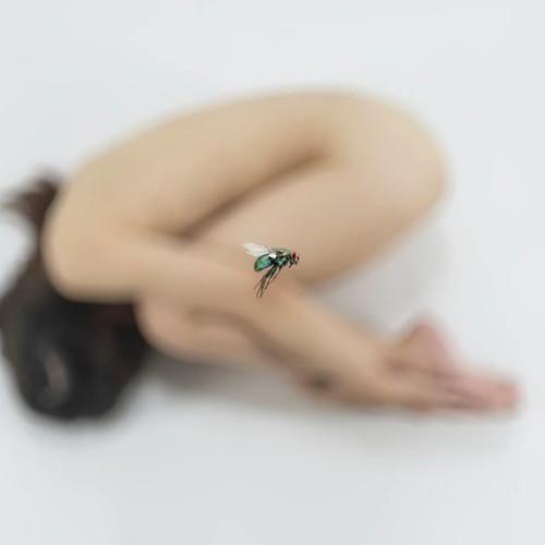 Arina Alexandra's avatar