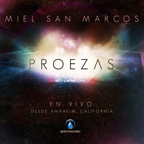 MielSanMarcos's avatar