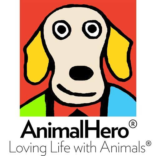 "AnimalHero ""My Helper"" Live School Performance by Dave Crawley for The AnimalHero Kids"