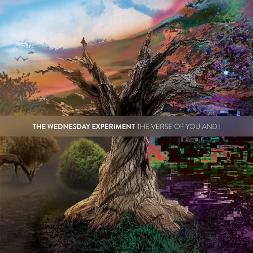 The Wednesday Experiment's avatar