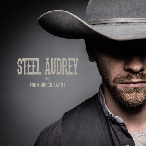 Steel Audrey's avatar