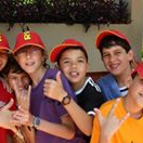 Gabriel Ribeiro Silva 7's avatar