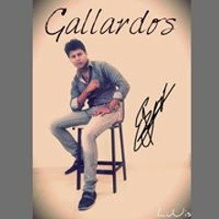 Jorge Luuis Gallardos