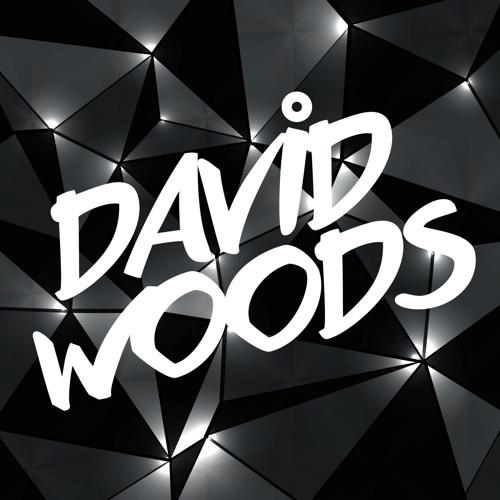 David Woods*'s avatar