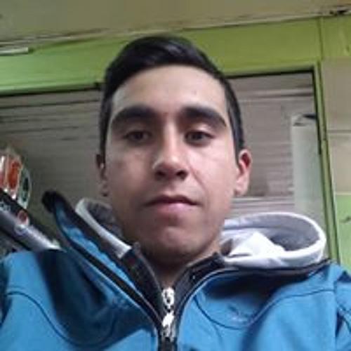 Gustavo Ignacio Alvarez's avatar