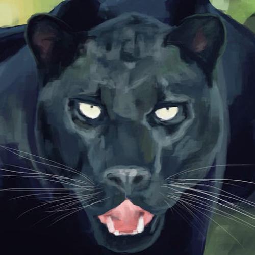 darthbaker's avatar