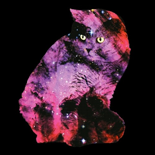 Cosmos Cat's avatar