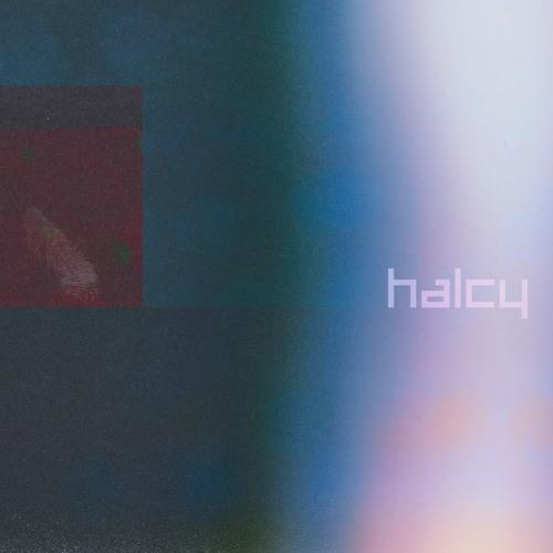 Halcy's avatar