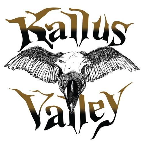 Kallus Valley's avatar