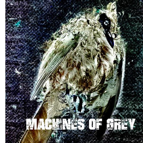 machines of grey's avatar