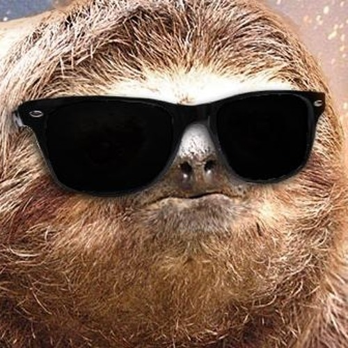 ChillSloth's avatar