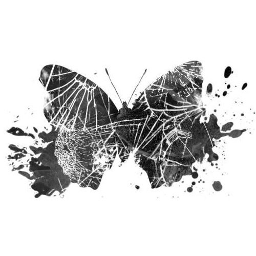Butterfly Crash's avatar