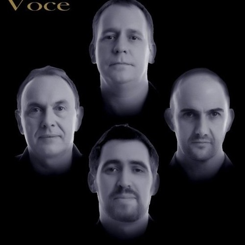 Voce Official's avatar