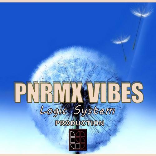 PNRMX VIBES's avatar