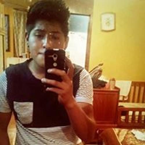 Luis Elt's avatar