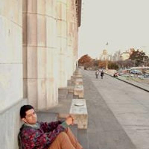 Felipe Camargo Saavedra's avatar