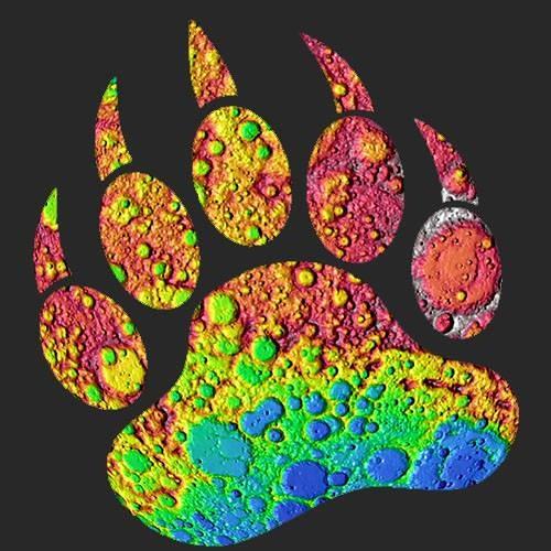 Moon Bears's avatar