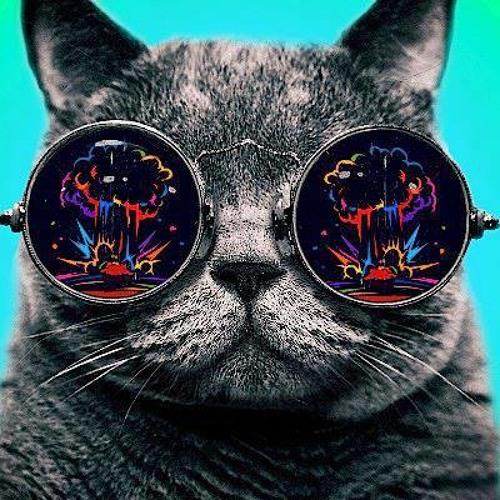 Plug TAMere's avatar