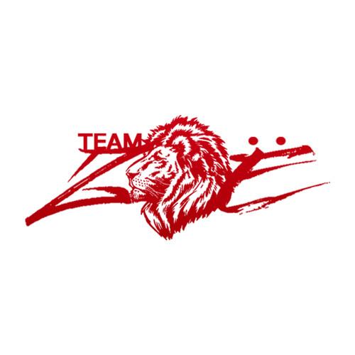 Team Zoë's avatar